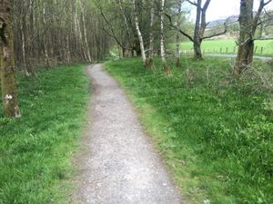 West Highland Way 862.JPG