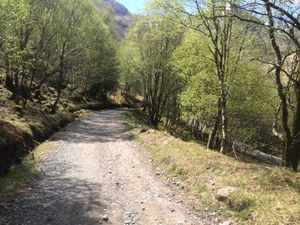 West Highland Way 1330.JPG