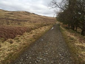 West Highland Way 1186.JPG