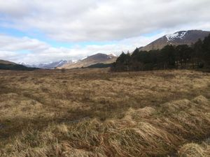 West Highland Way 1179.JPG