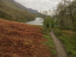West Highland Way 967.JPG