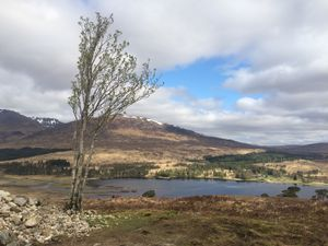 West Highland Way 1167.JPG