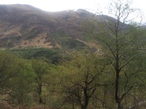 West Highland Way 1375.JPG