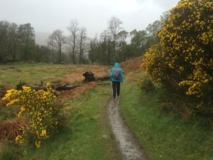 West Highland Way 995.JPG