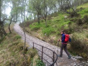 West Highland Way 1377.JPG