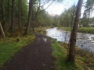 West Highland Way 1089.JPG