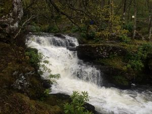 West Highland Way 921.JPG