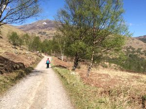 West Highland Way 1337.JPG