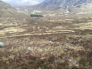 West Highland Way 1290.JPG