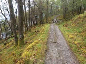 West Highland Way 907.JPG