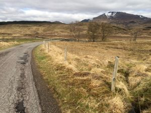 West Highland Way 1174.JPG