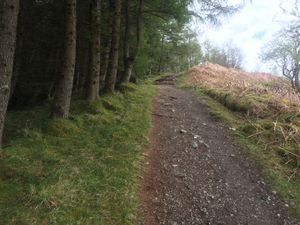 West Highland Way 1028.JPG