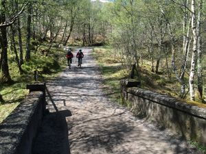West Highland Way 1333.JPG