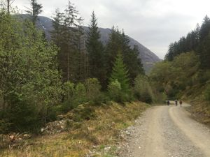 West Highland Way 1446.JPG