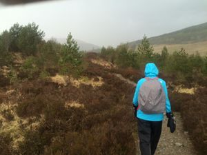 West Highland Way 1086.JPG