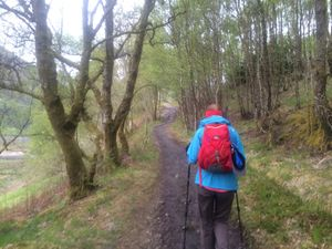 West Highland Way 1371.JPG