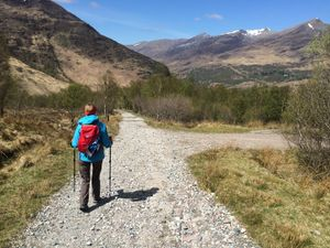 West Highland Way 1327.JPG