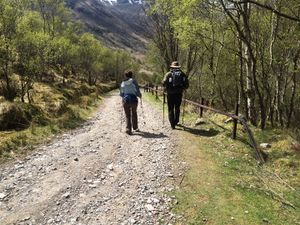 West Highland Way 1329.JPG