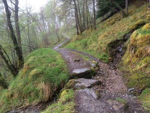 West Highland Way 908.JPG