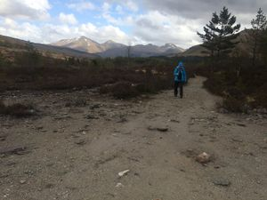 West Highland Way 1088.JPG