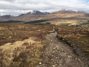 West Highland Way 1166.JPG