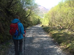 West Highland Way 1342.JPG