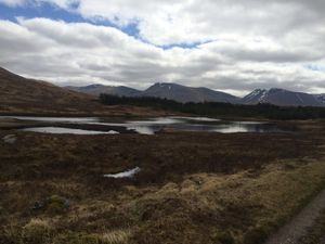 West Highland Way 1202.JPG