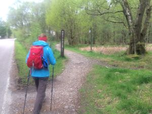 West Highland Way 1370.JPG
