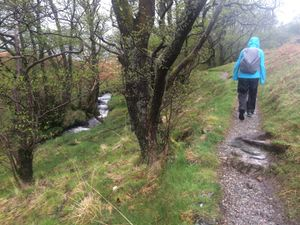 West Highland Way 984.JPG