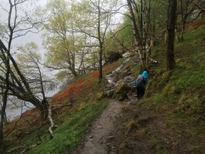 West Highland Way 934.JPG