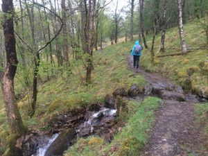 West Highland Way 994.JPG