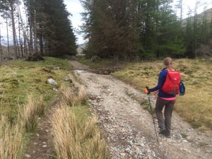 West Highland Way 1414.JPG