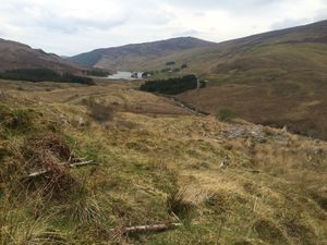 West Highland Way 1417.JPG